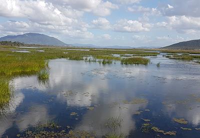 Snapshot of Australia Ramsar - Listed Wetlands